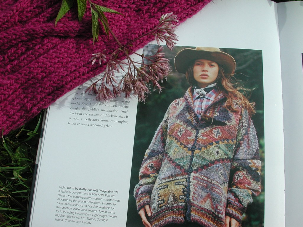 Harvesting color, with inspiration from Rowan Magazine 10 - included in the book - the glorious Kaffe Fassett plays with color, yarn and design.