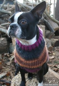 Boston terrier hand knit sweater, custom design Poems. Photo Moo Dog Knits