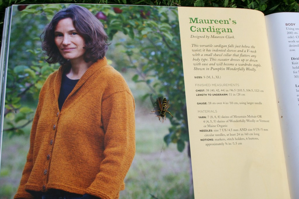 Maureen's sweater from '99 Yarns And Counting: More Designs from The Green Mountain Spinnery.