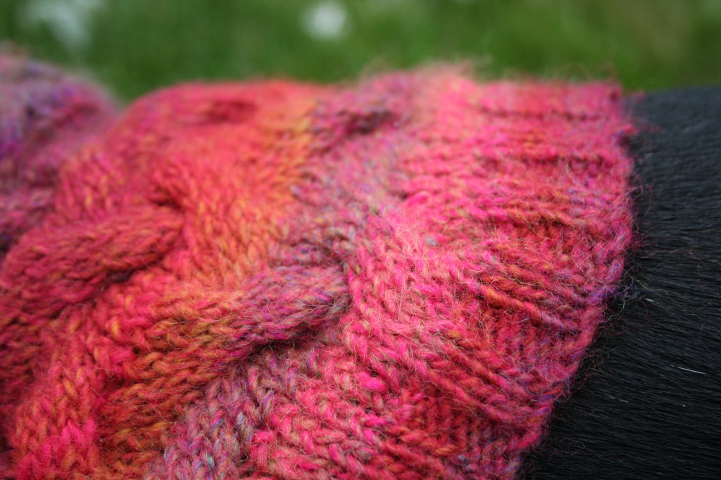 Detail of cabled sweater for a Boston terrier. Moo Dog Knits Magazine.