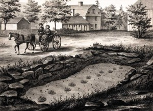 Dinosaur trackway illustration and a massive collection at Amherst College.