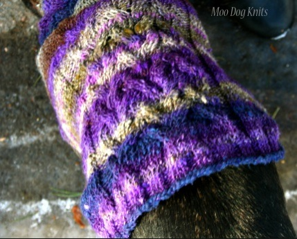 Noro knit - a custom dog sweater detail.