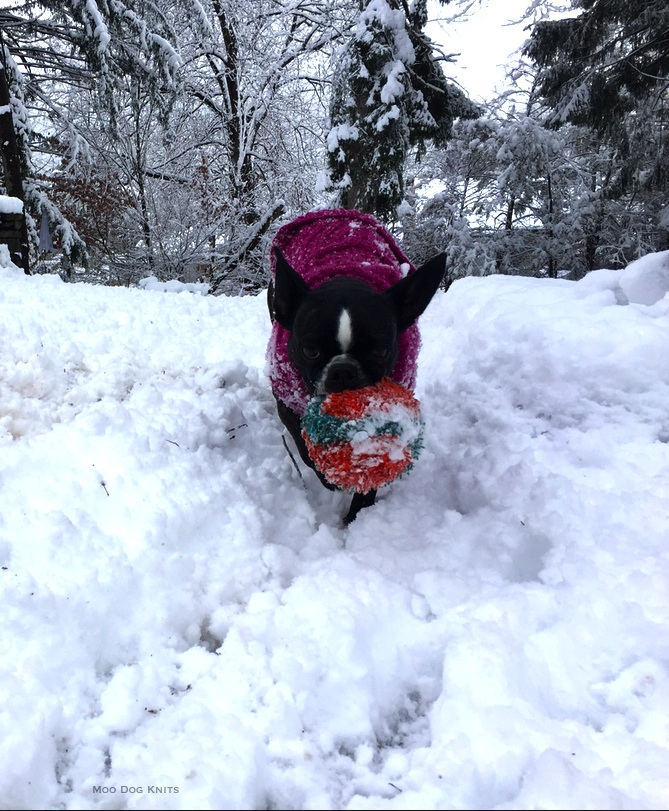 In the snow. © Moo Dog Knits