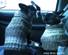Warm in knits. © Moo Dog Knits