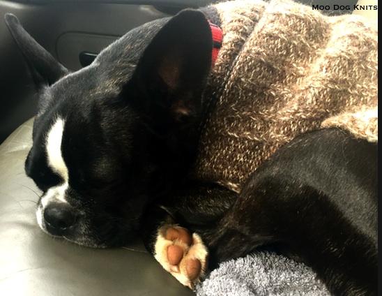 Snooze knit warm. © Moo Dog Knits