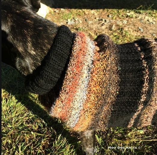 Knit of Noro and black wool. Photo Moo Dog Knits