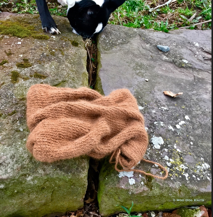 Pure alpaca knit cowl with Boston terrier on old brownstone steps.